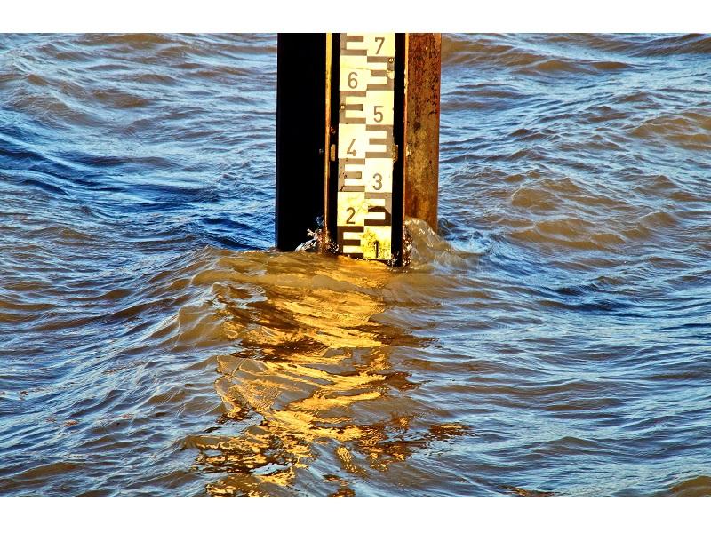Keep proper water levels